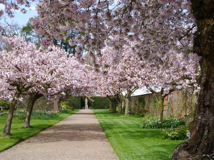 Bank Holiday Ideas - Doddington Hall
